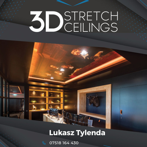 3D Stretch Ceilings